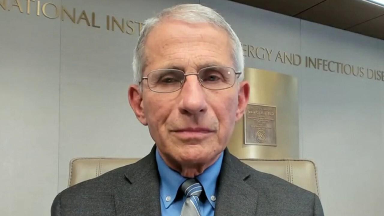Dr. Fauci predicts progress for 'safe' COVID-19 vaccine will take over '1 year'