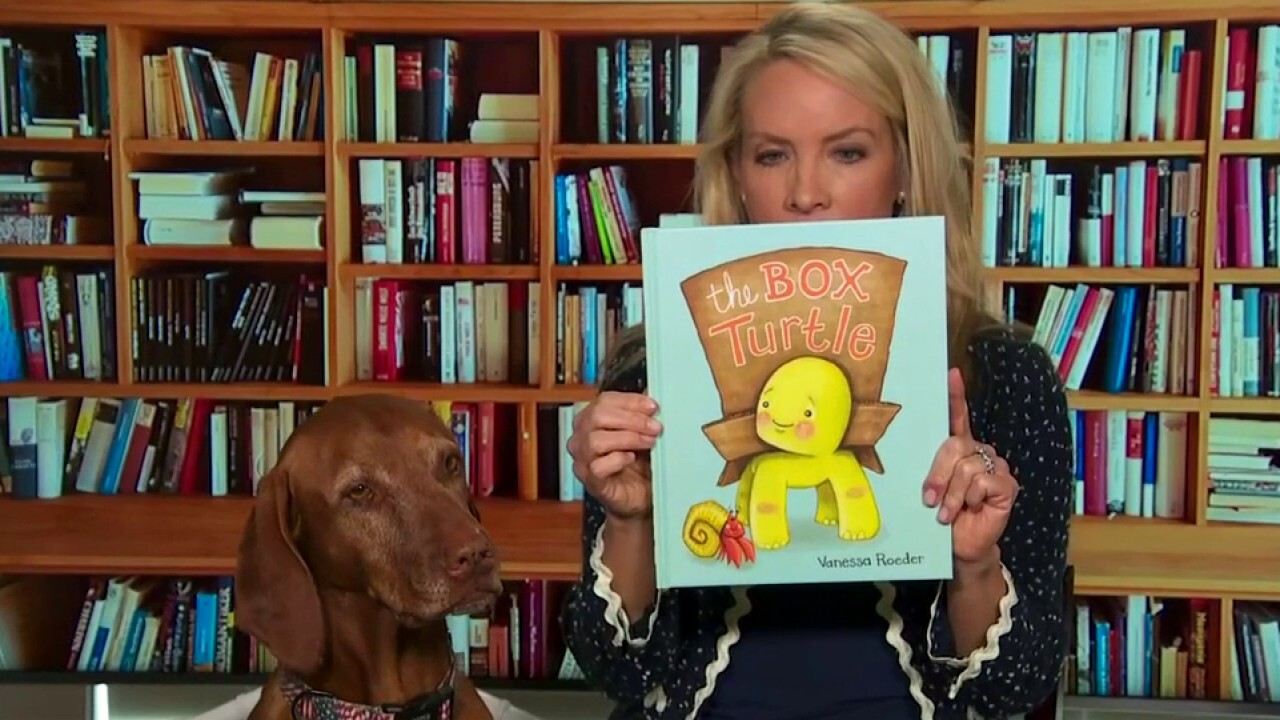 Dana reads 'The Box Turtle' and 'Can I Be Your Dog?'