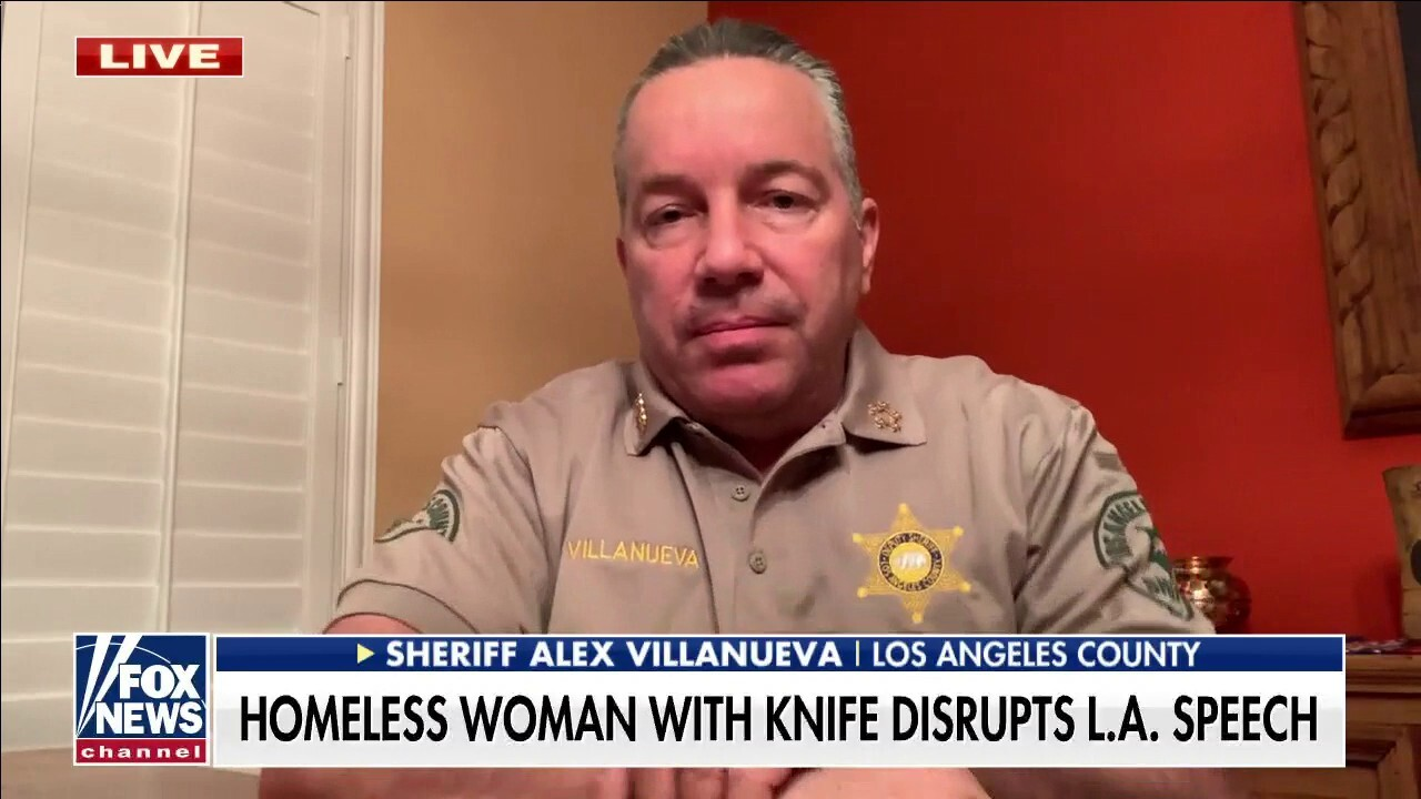 LA County sheriff slams failed policies for homeless crisis: It's year after year of 'insanity'