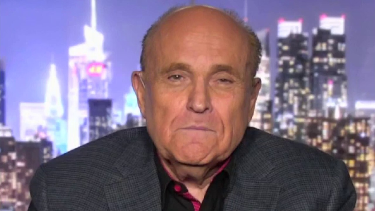 Trump to Rudy: 'I could go out and do a rally'