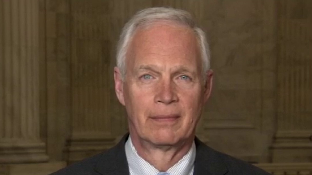 Sen. Johnson discusses investigation into Hunter Biden