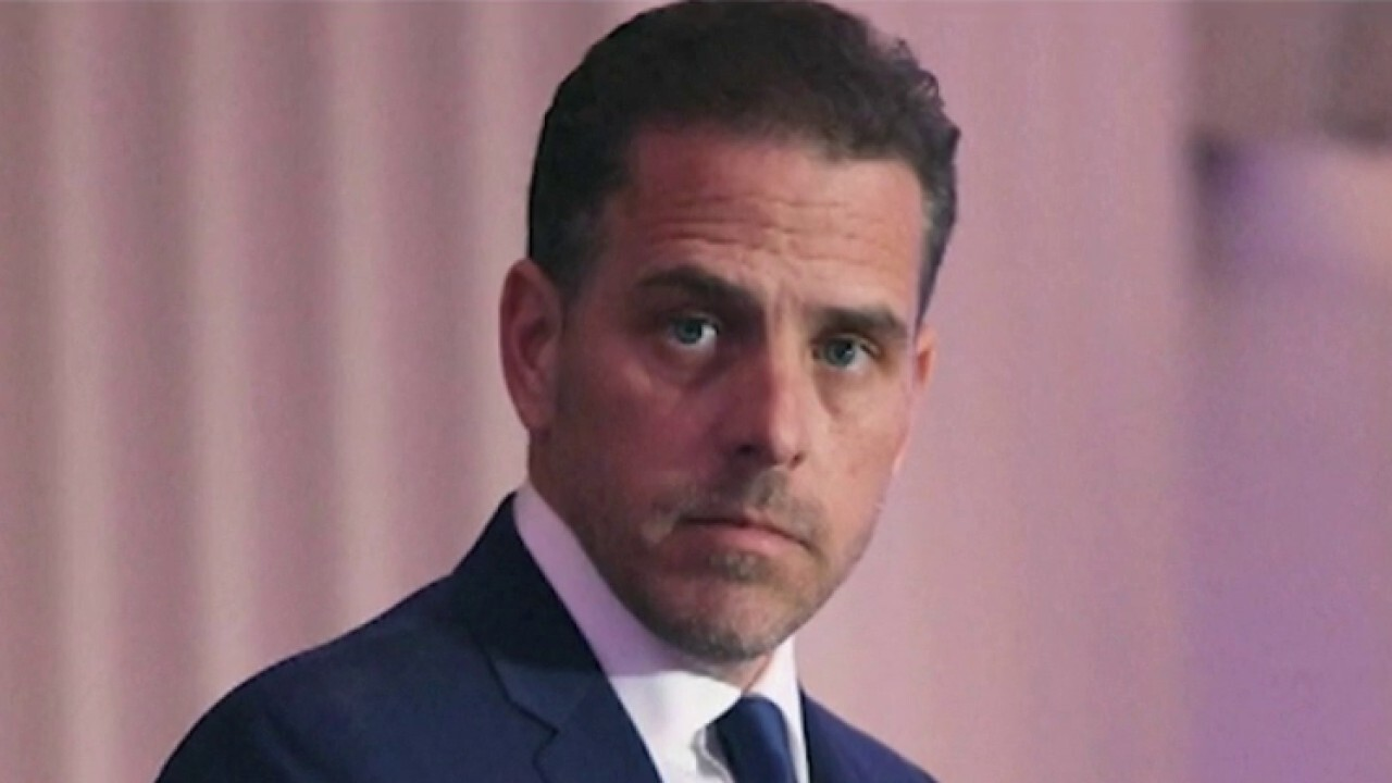 Concha accuses mainstream media of painting Hunter Biden as a 'sympathetic figure'