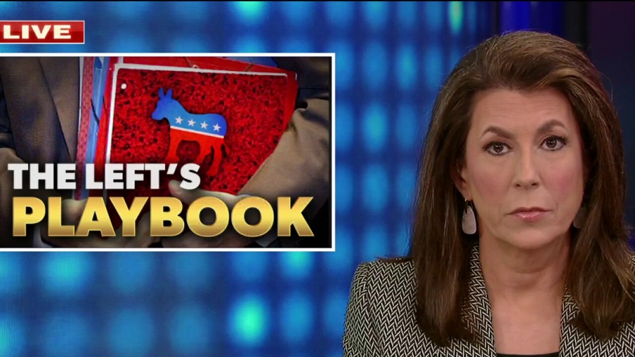 Tammy Bruce: Left is 'racist, America-hating mob'