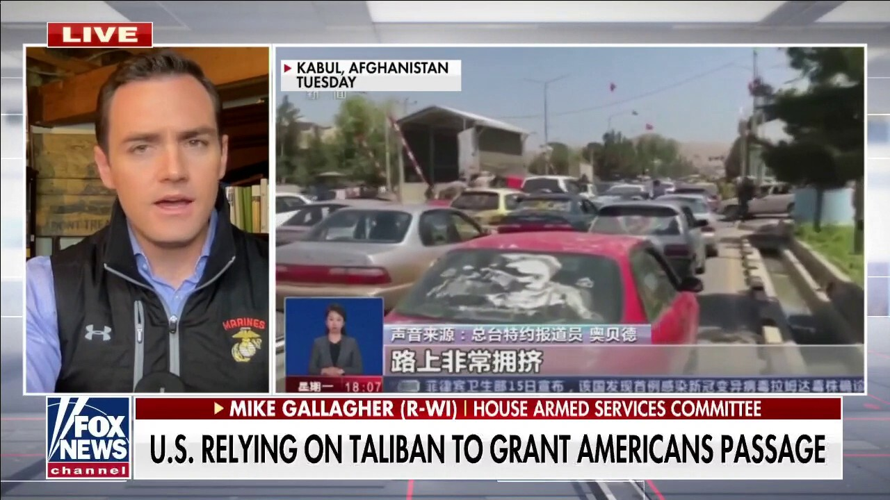 Rep. Gallagher: America is dependent upon the goodwill of the Taliban