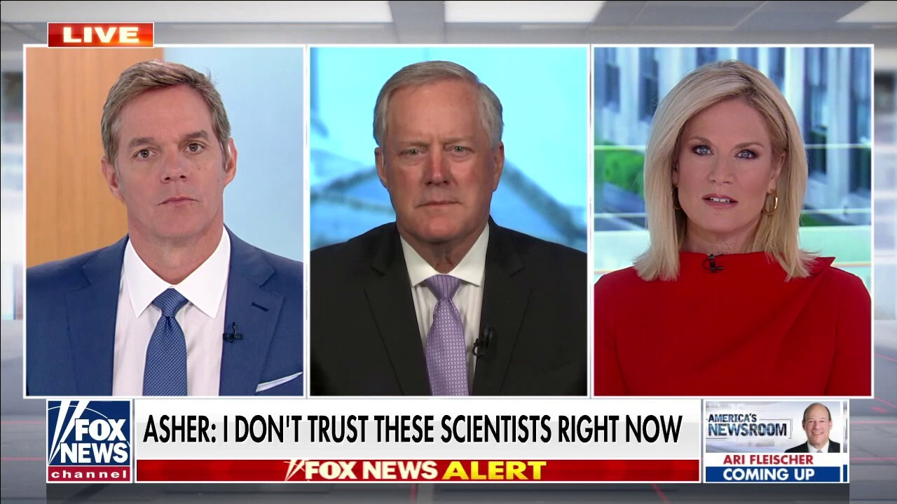 Meadows rips scientist's statements on coronavirus origins: 'We are in a Biden cover-up mode'