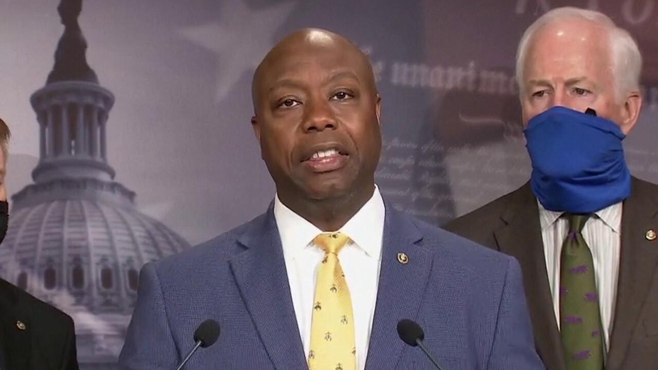 Senate Republicans, led by Sen. Tim Scott, unveil police reform bill