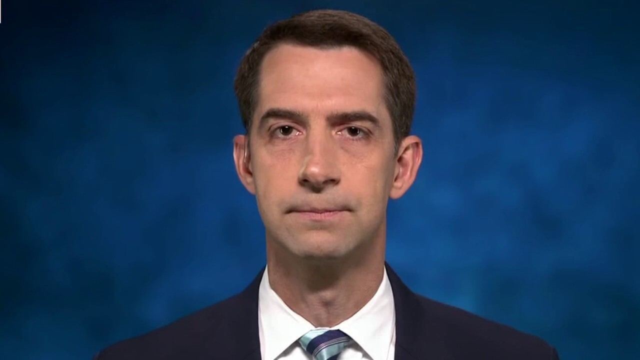 Border crisis 'about to get a lot worse' with Dems' amnesty plan: Sen. Cotton
