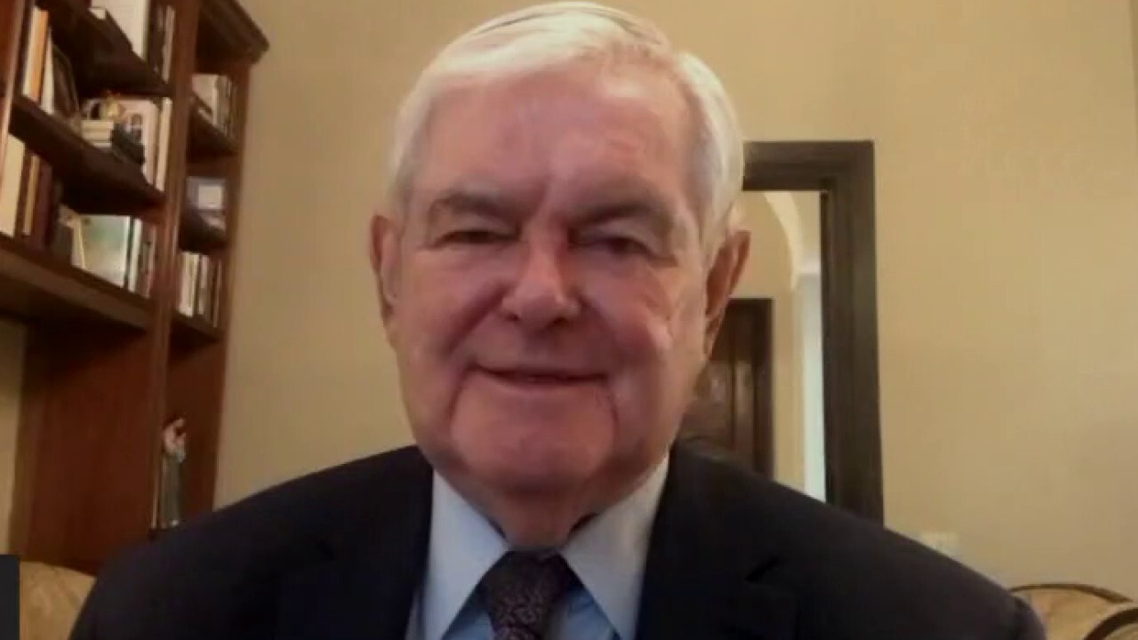 Sen. Johnson is frustrated by depth of 'hypocrisy, dishonesty' that is now routine in 'US power structure': Gingrich