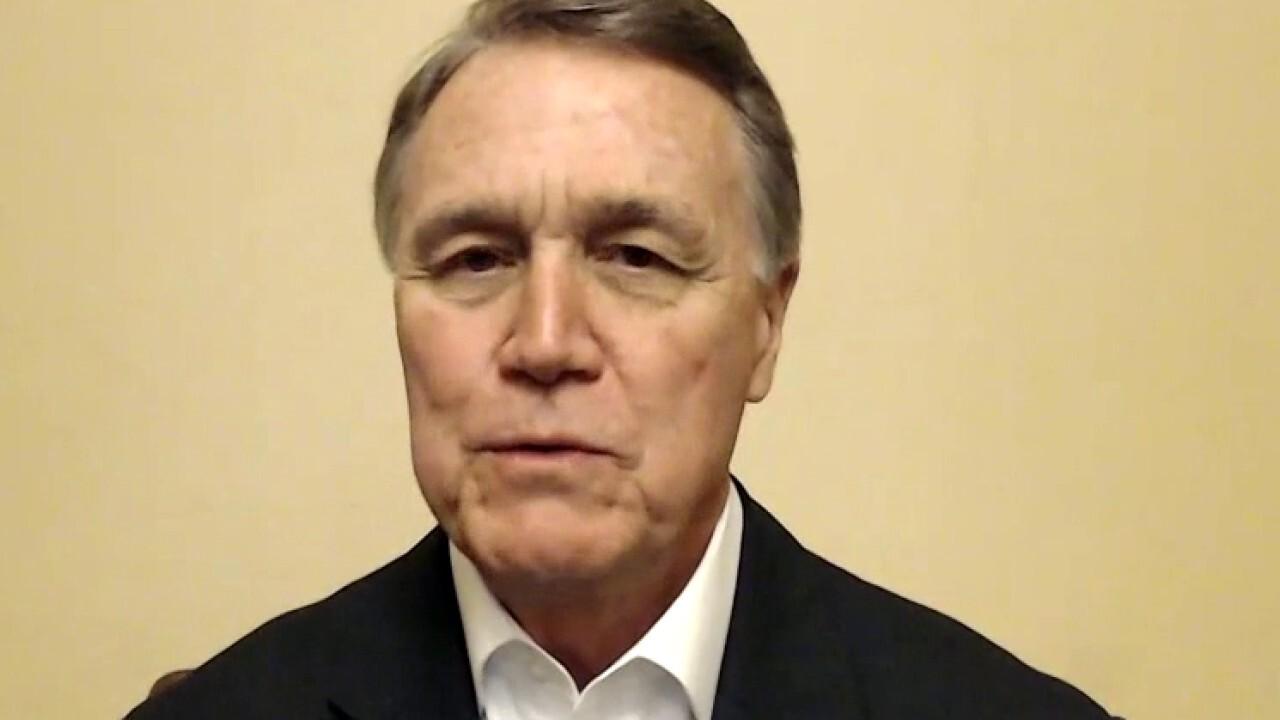 它的. David Perdue says Georgia runoffs are 'last line of defense' against far left agenda