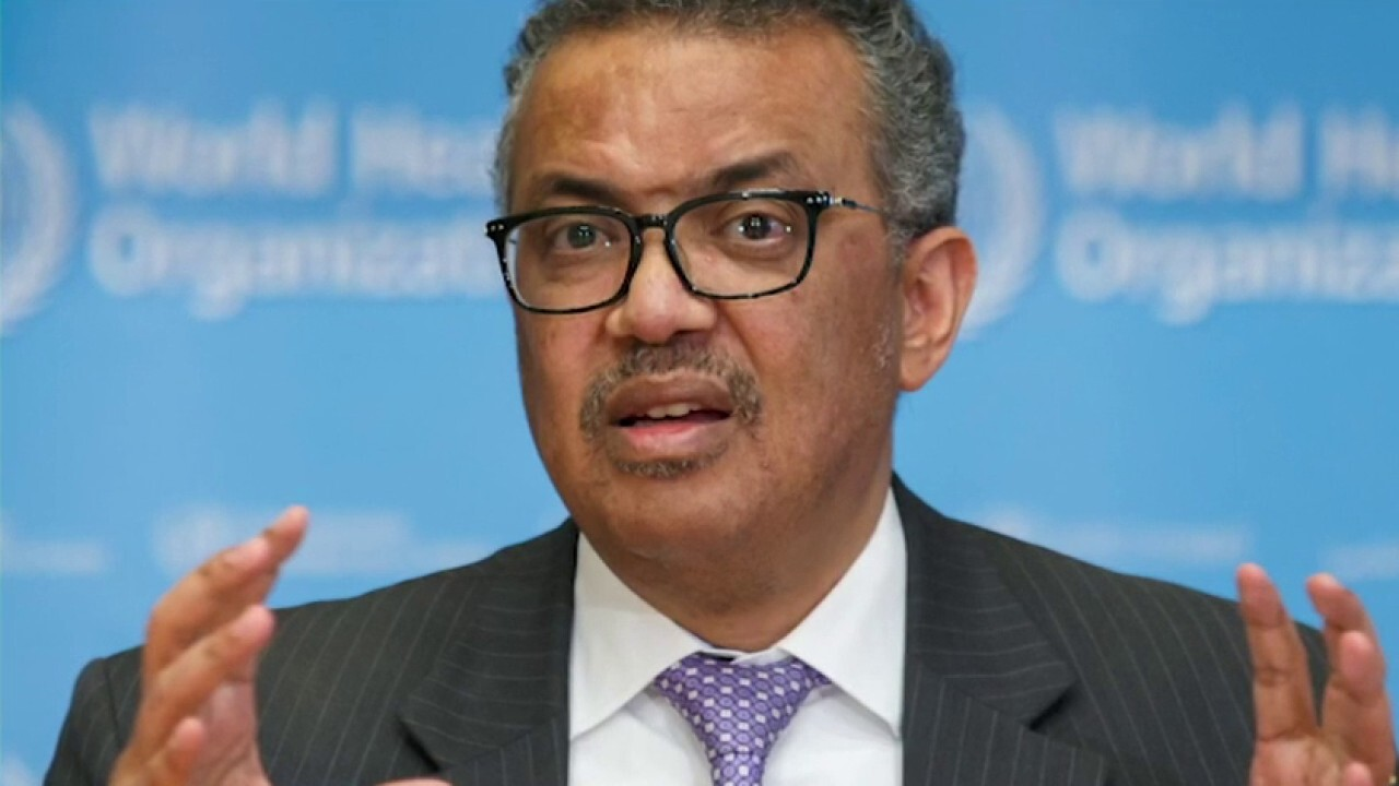 WHO warns of 'deadly resurgence' if coronavirus restrictions are lifted too soon