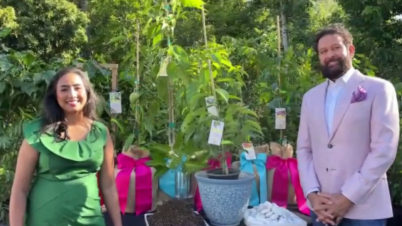 Give the gift of a plant or garden for Mother's Day