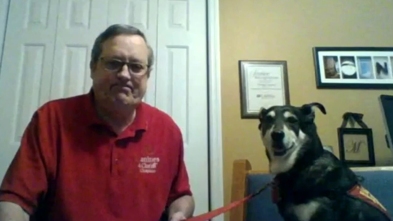 Chaplain and his therapy dog care for frontline workers during coronavirus pandemic