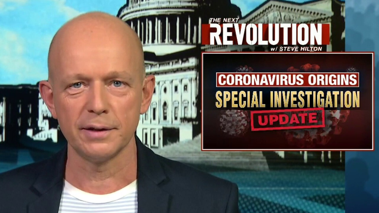 Steve Hilton blasts WHO for Wuhan COVID report