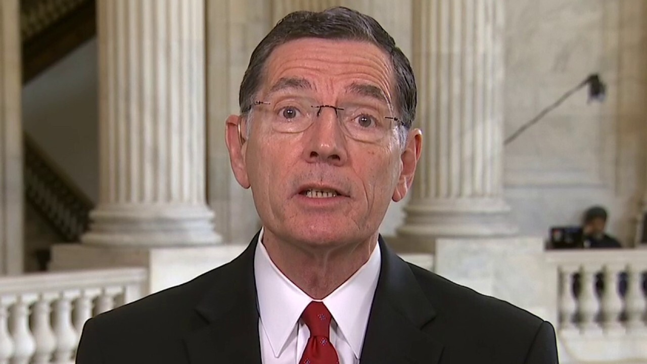 Sen. John Barrasso: Coronavirus collateral damage – here's why we must open smartly, safely and soon