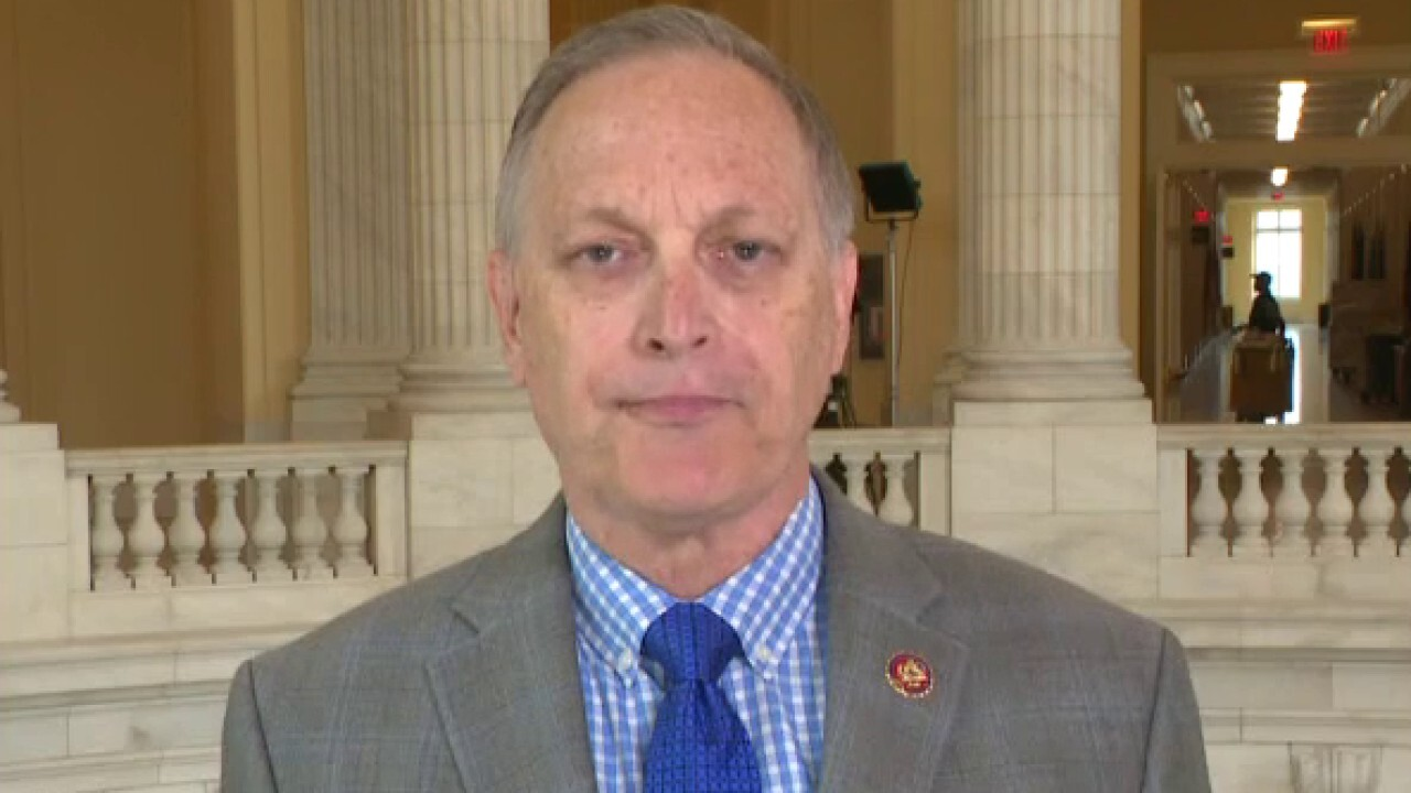 Rep. Biggs on congressional GOP condemning riots on House floor
