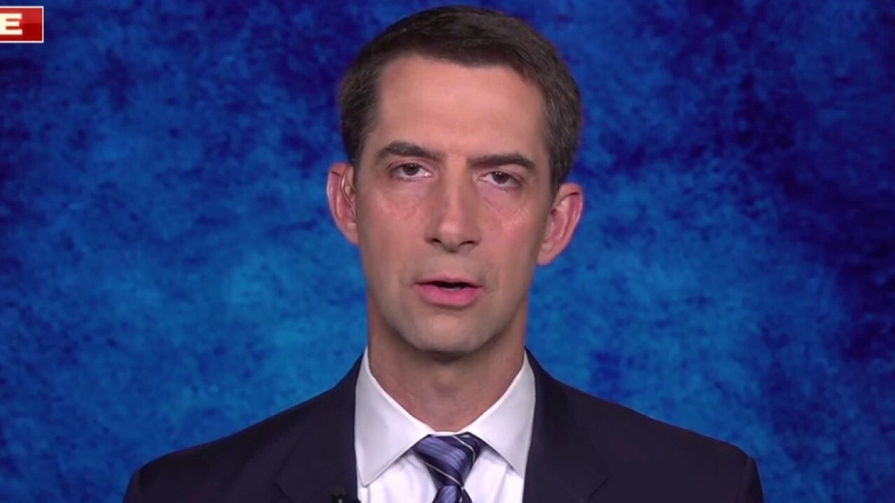 Sen. Tom Cotton calls Biden's Afghanistan exit 'chaotic and disorganized'