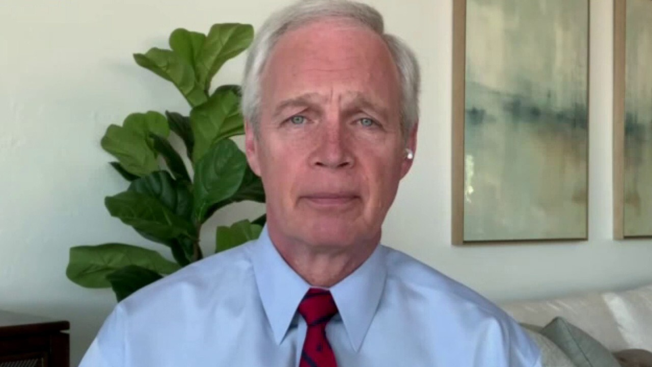 Sen. Johnson: Mainstream media, Democrats want to sweep 'legitimate' election concerns under the rug