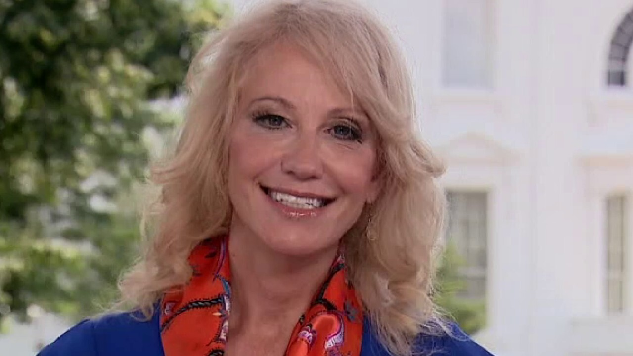Kellyanne Conway: Trump is a visionary, he's positive and patriotic