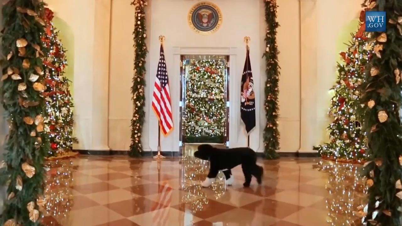 White House Christmas: Fox Nation