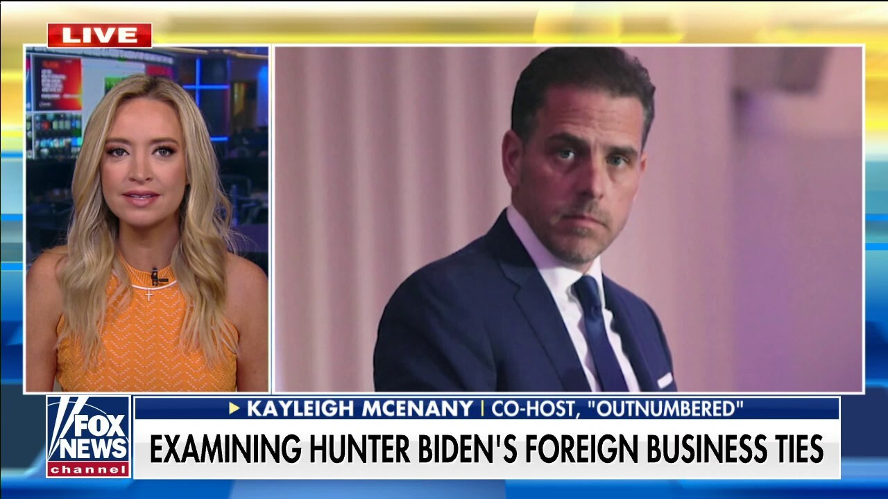 Kayleigh McEnany slams media's cover-up of Hunter Biden: They hid the story, influenced the election