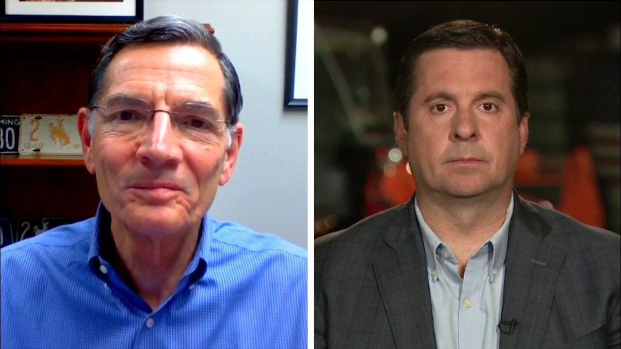 Sen. John Barrasso, Rep. Devin Nunes respond to Laura Ingraham's call for Congress to return to work