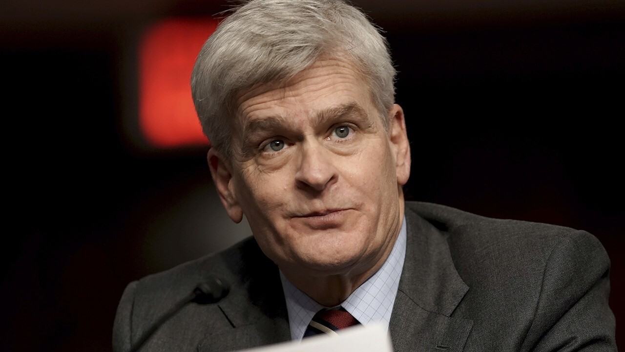 Americans are 'disturbed' by Biden's 'incompetence' handling crises: Sen. Cassidy