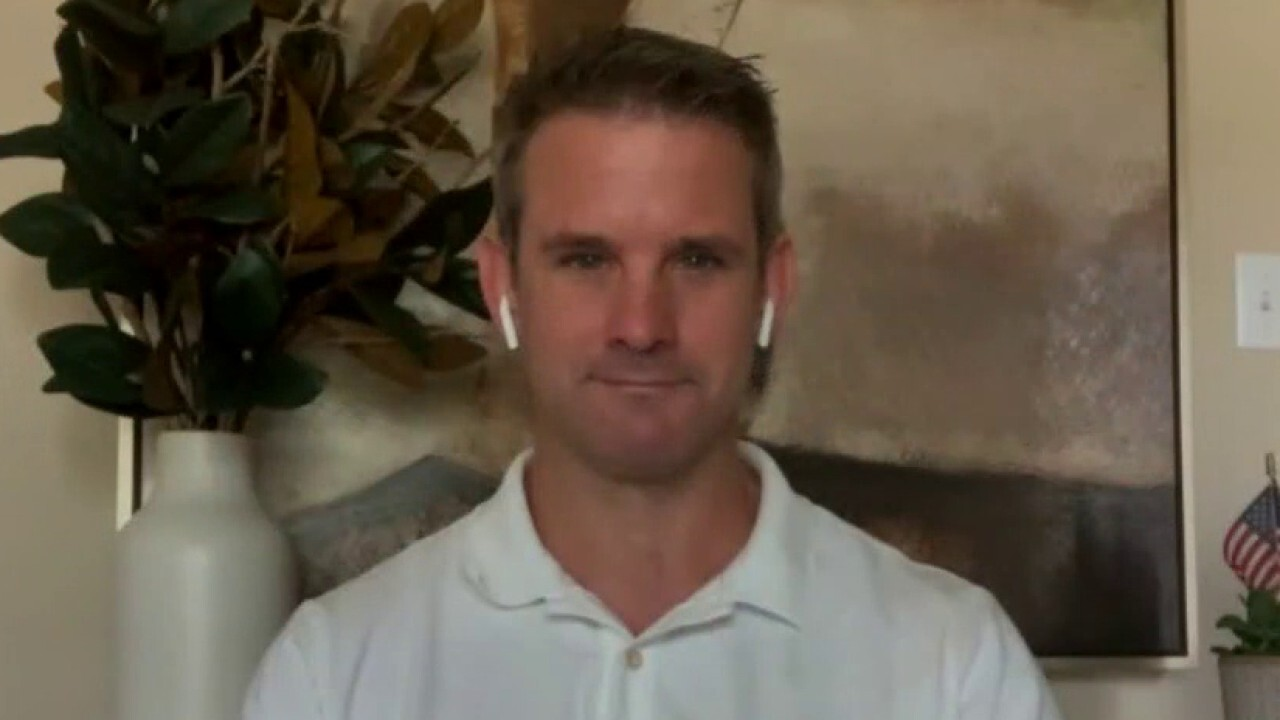 Rep. Adam Kinzinger weighs in on Trump campaign strategy