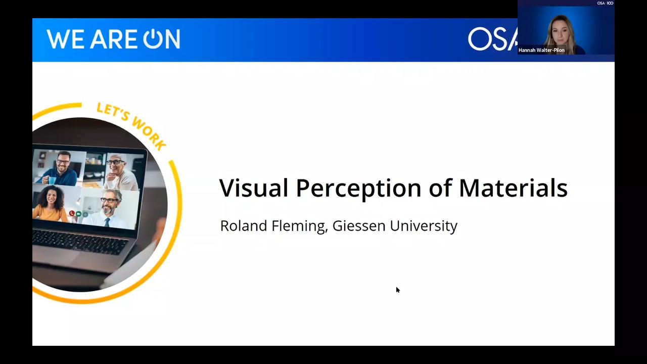 Visual Perception of Materials