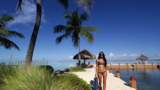 Slow Down. The Florida Keys