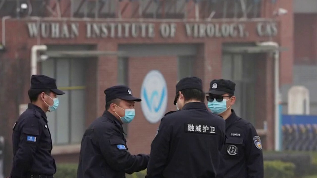 WHO probe into COVID-19 origins leaves key questions unanswered