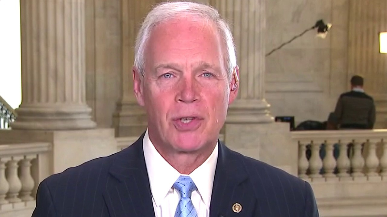 Sen. Johnson: Oftentimes gridlock is the best solution in DC