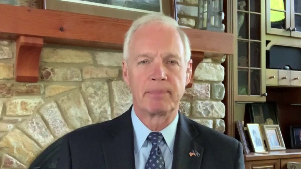 Sen. Ron Johnson, R-Wis., argues there must have been a 'cover-up' by government officials, China and the mainstream media regarding the origins of COVID-19 - and that's why he believes Democrats have not had a hearing on the matter.