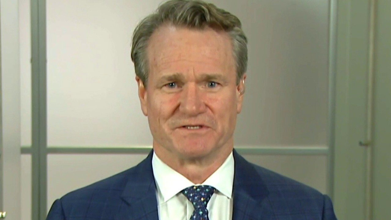 Bank of America CEO on short selling frenzy and economic outlook