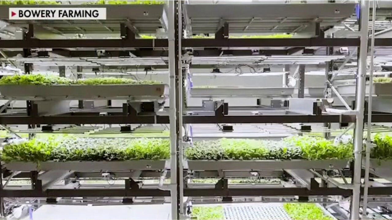 FOX Business' Lydia Hu explains the benefits of indoor farming.