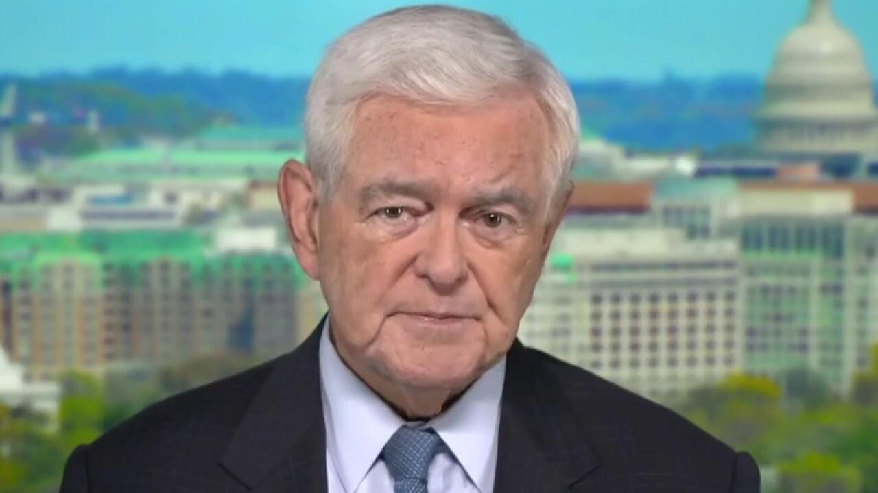 Former House Speaker Newt Gingrich argues Sen. Bernie Sanders' 'socialist' bill will cause trouble for Democrats.