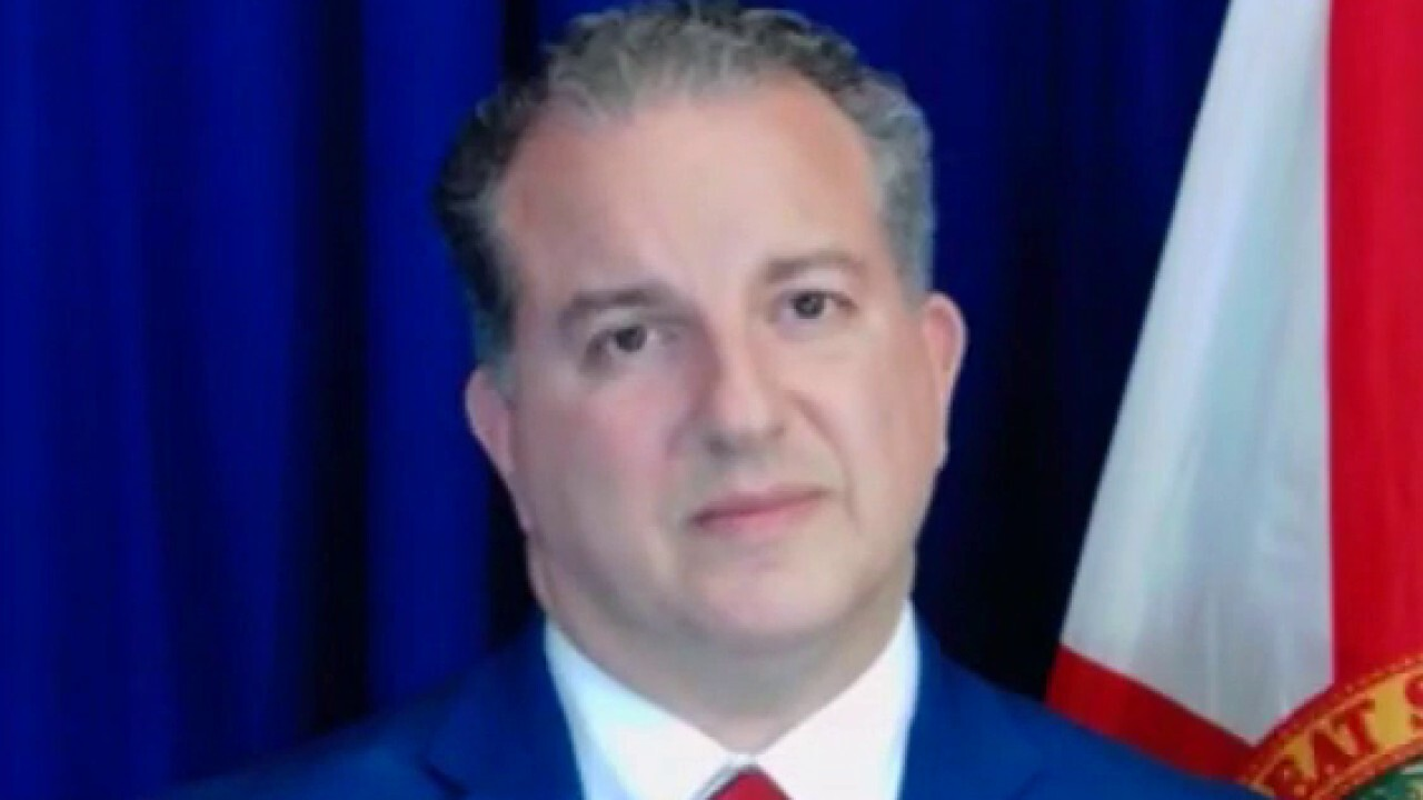 Florida's Chief Financial Officer Jimmy Patronis argues companies should stay out of politics.