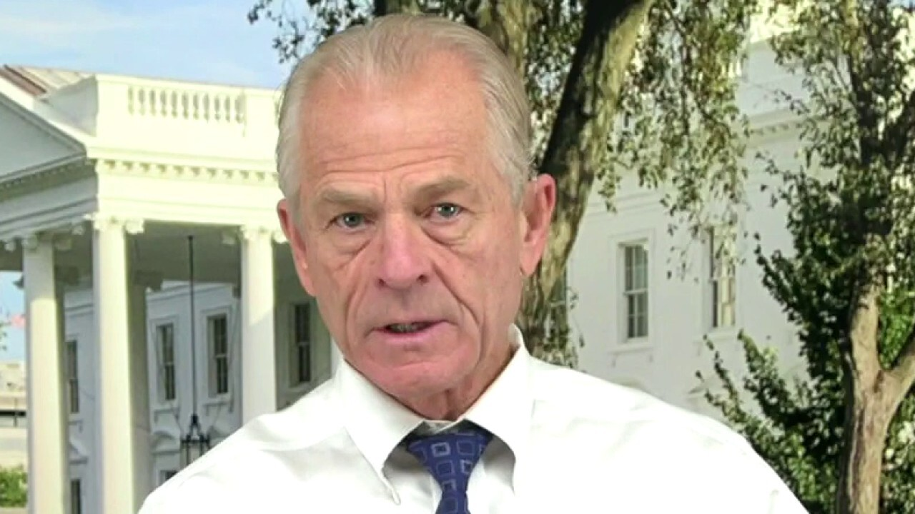 White House Office of Trade and Manufacturing Director Peter Navarro weighs in on Parler being banned.
