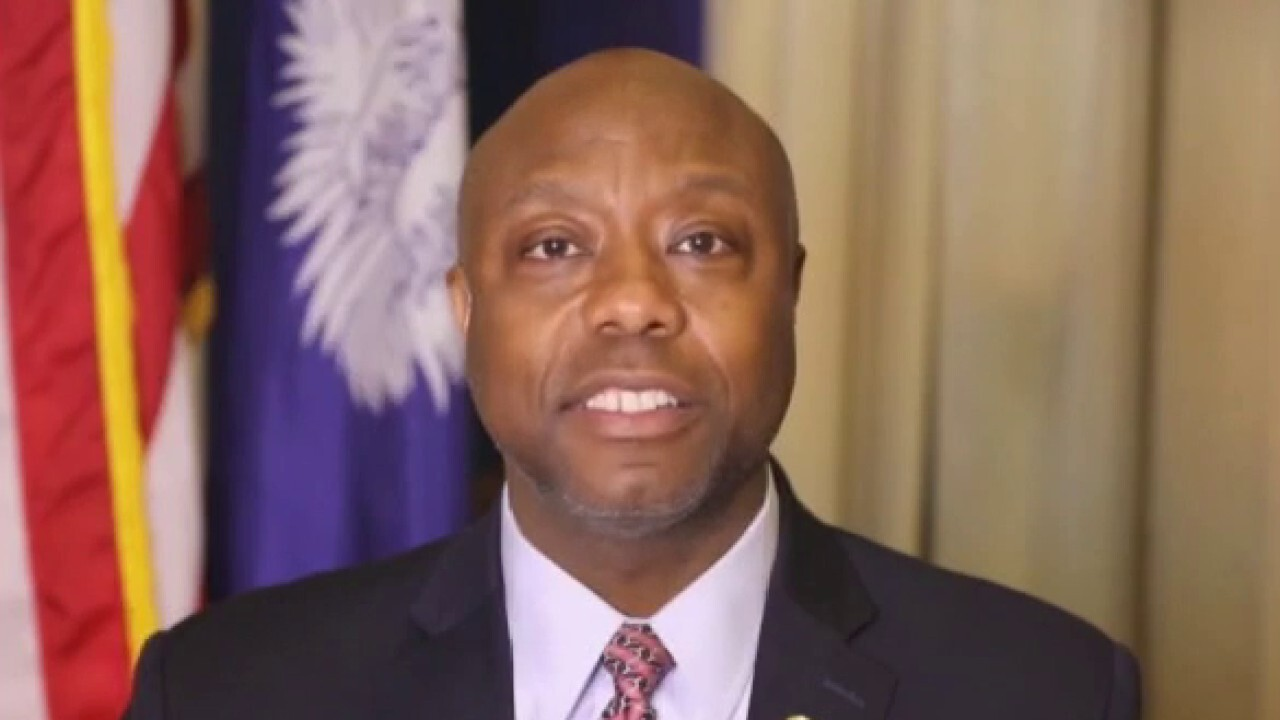 Tim Scott: Greatest people on 'God's green earth' are ordinary Americans