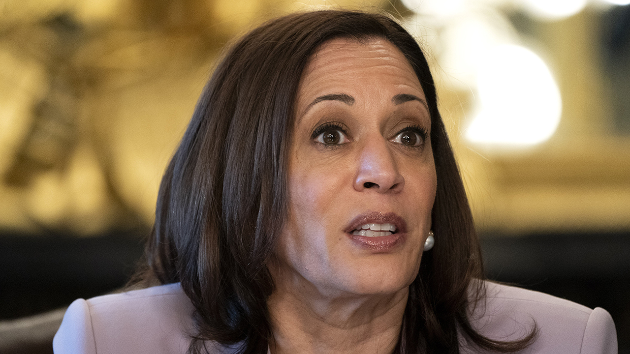 Former acting ICE director Ron Vitiello argues Vice President Harris was steps away from a 30-foot wall at the centralized processing center.
