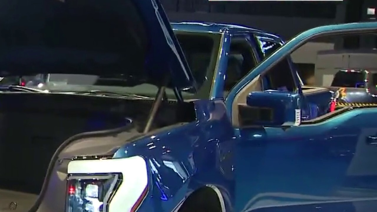 FOX Business' Grady Trimble speaks with Ford exec Darren Palmer on electric car models at the Chicago Auto Show.