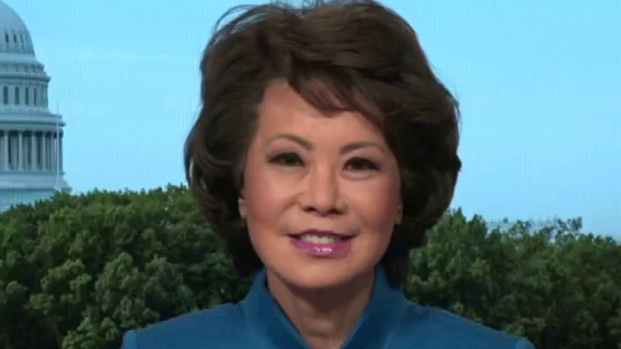 The private sector should develop charging stations for electric vehicles: Elaine Chao