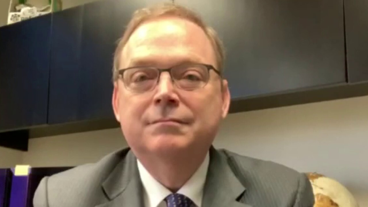 Economist Kevin Hassett argues increasing the minimum wage to $15 would be a 'devastating blow' to small businesses that have had an incredibly challenging year.