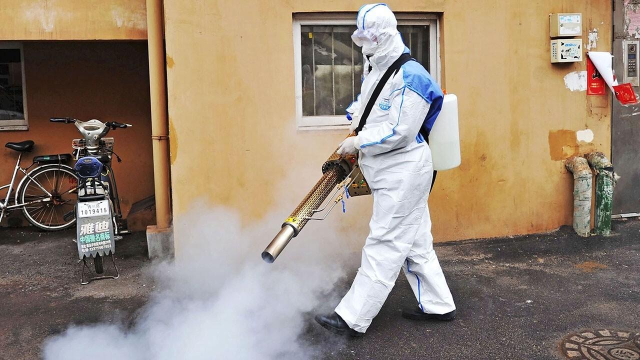 Ex-WHO adviser on China's coronavirus cover-up