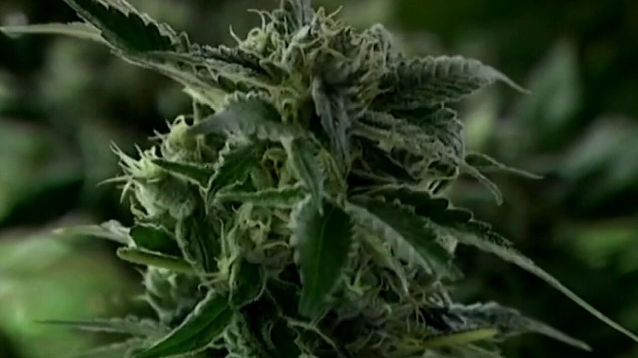 Senate Democrat leaders' new marijuana legislation faces uphill battle