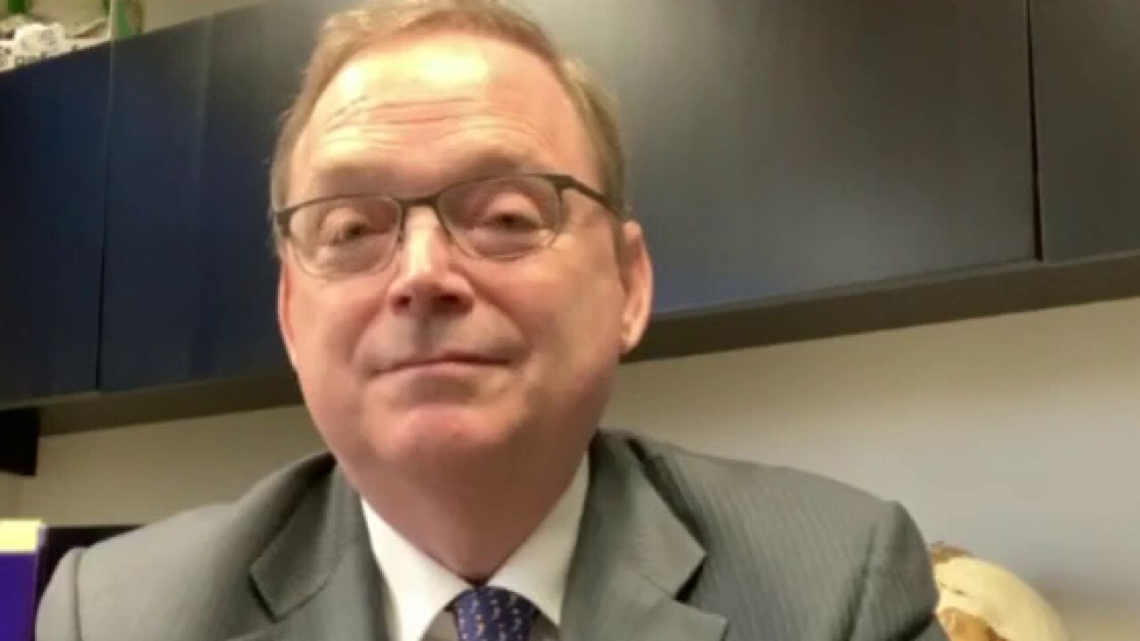 Economist Kevin Hassett argues the wealthy will find ways to 'avoid' the tax by hiding their wealth.
