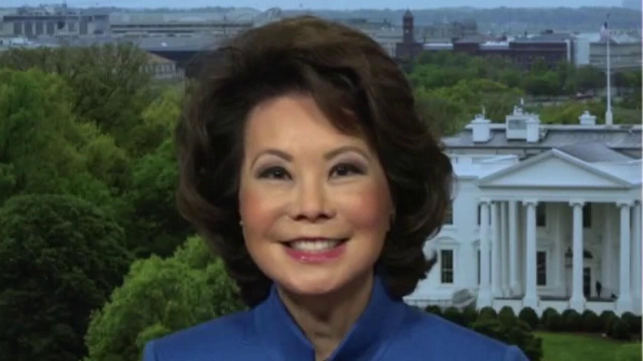 Elaine Chao: Biden infrastructure plan: 'a lot of new social welfare programs'