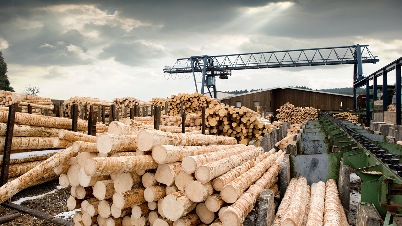 Sherwood Lumber COO on what's driving the 'inevitable' decline of lumber prices
