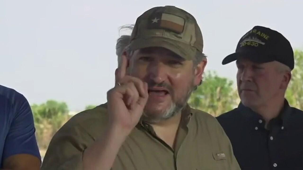 Ted Cruz gets emotional over border visit: We saw the Biden cages