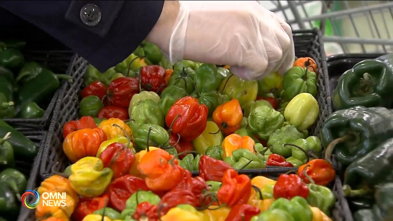 食物救济组织缺乏资源整合 引发专家担忧 — Oct. 07, 2021 (ON)